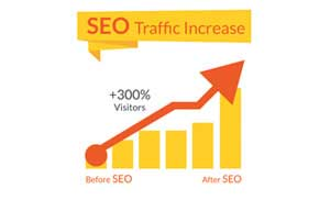Local SEO & Search Engine Optimzation