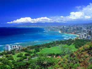 SEO Honolulu by Nice & Easy Web Design