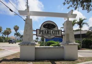 Web Design Pearl City, HI by Nice & Easy Web Design